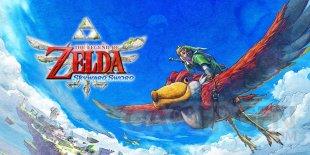 The Legend of Zelda Skyward Sword head
