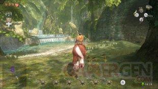 The Legend of Zelda Twilight Princess HD  (8)