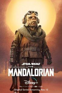 The Mandalorian Star Wars poster 5