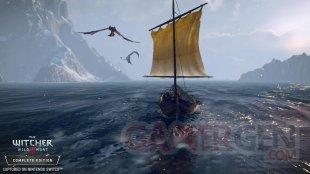 The Witcher 3 Wild Hunt 11 06 2019 screenshot Switch (7)