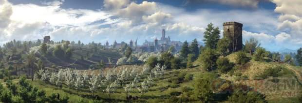 The Witcher 3 Wild Hunt 16.12.2014  (9)