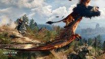 The Witcher 3 Wild Hunt 26.01.2015  (1)