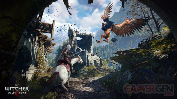 The Witcher 3 Wild Hunt 26.01.2015  (4)
