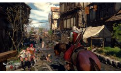 The Witcher 3 Wild Hunt 26.01.2015  (7)