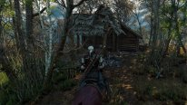 The Witcher 3 wild hunt (2)