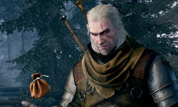 The Witcher 3 Wild Hunt complete edition switch image