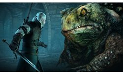 The Witcher 3 Wild Hunt image screenshot 15