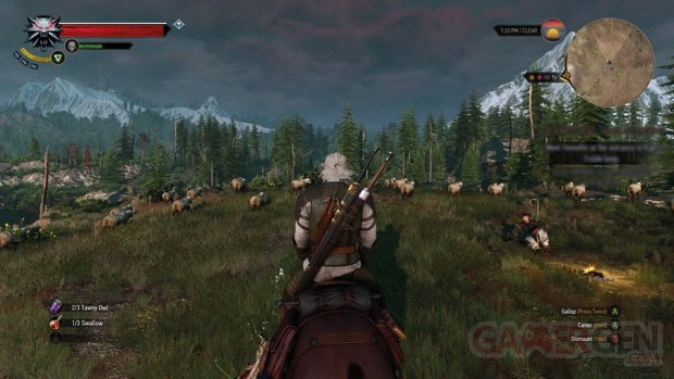 The Witcher 3 Wild Hunt image screenshot 5
