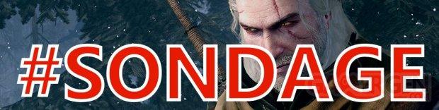 The Witcher 3 Wild Hunt sondage (2)