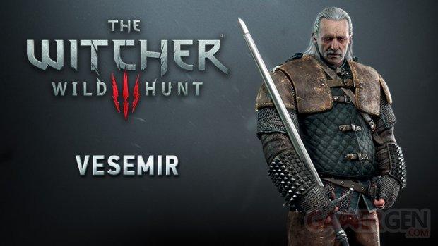 The Witcher 3 Wild Hunt Vesemir