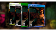 The Wolf Among Us boites