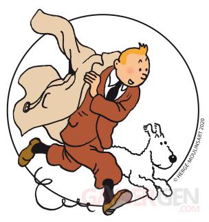 Tintin pic