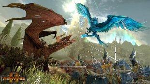 Total War Warhammer II Elfes Noirs (6)