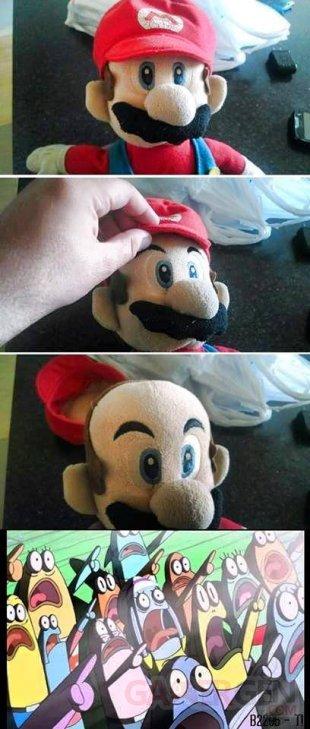 Troll ve?rite? Mario
