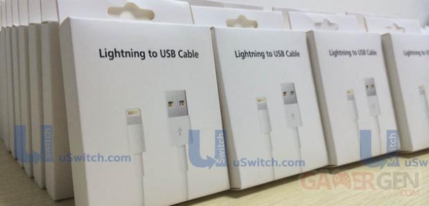 USB reversible iPhone 6 2