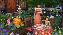 Vie à la campagne Sims 4 Pack Extension (2)