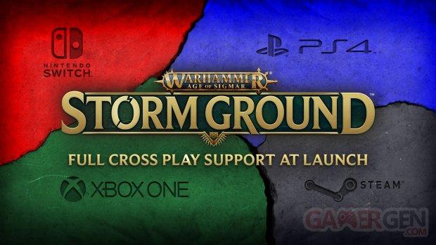 Warhammer Age of Sigmar Storm Ground cross play