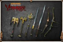 Warhammer The End Times   Vermintide2