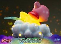 Warp Star Kirby F4F Exclusive (11)