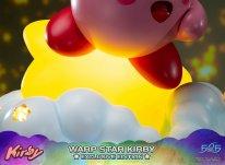 Warp Star Kirby F4F Exclusive (14)
