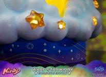 Warp Star Kirby F4F Exclusive (15)