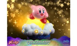 Warp Star Kirby F4F Exclusive (1)