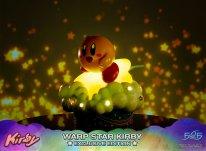 Warp Star Kirby F4F Exclusive (20)