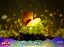 Warp Star Kirby F4F Exclusive (22)