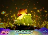 Warp Star Kirby F4F Exclusive (23)