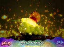 Warp Star Kirby F4F Exclusive (25)