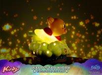 Warp Star Kirby F4F Exclusive (26)