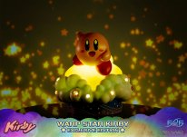 Warp Star Kirby F4F Exclusive (28)