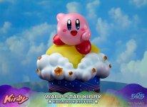 Warp Star Kirby F4F Exclusive (30)