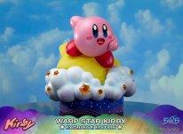 Warp Star Kirby F4F Exclusive (31)