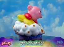 Warp Star Kirby F4F Exclusive (32)