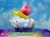 Warp Star Kirby F4F Exclusive (33)