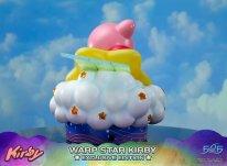 Warp Star Kirby F4F Exclusive (34)