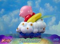 Warp Star Kirby F4F Exclusive (36)