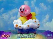 Warp Star Kirby F4F Exclusive (37)
