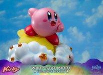 Warp Star Kirby F4F Exclusive (39)