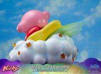 Warp Star Kirby F4F Exclusive (41)