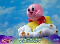 Warp Star Kirby F4F Exclusive (42)