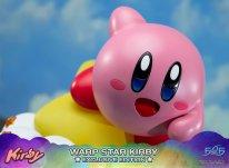 Warp Star Kirby F4F Exclusive (43)