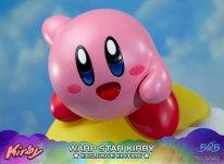 Warp Star Kirby F4F Exclusive (44)