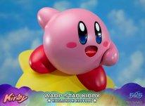 Warp Star Kirby F4F Exclusive (45)