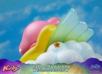 Warp Star Kirby F4F Exclusive (49)