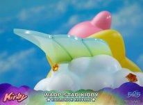 Warp Star Kirby F4F Exclusive (50)