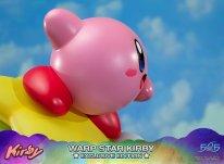 Warp Star Kirby F4F Exclusive (51)