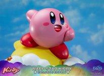 Warp Star Kirby F4F Exclusive (53)