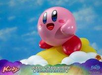 Warp Star Kirby F4F Exclusive (54)